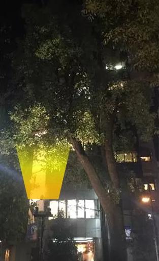 ガーデンライト画像2