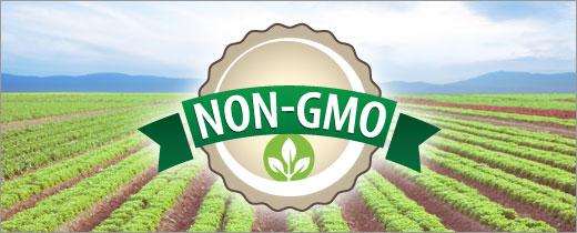 大豆 NON-GMO