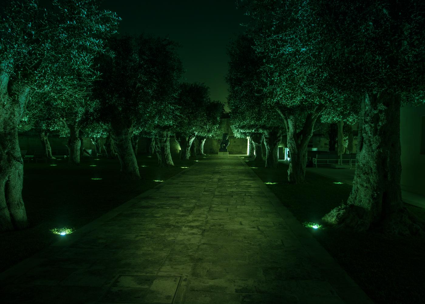 緑色LED地中埋込照明演出例