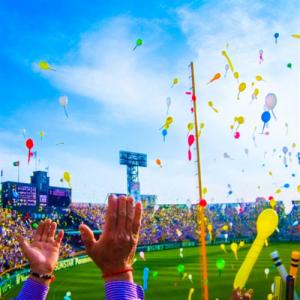 プロがおすすめ!屋外野球スタジアムにスポーツ照明を設置するなら岩崎電気製を選びましょう