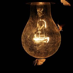 LEDは発熱しない?虫が寄ってこないって本当?その疑問にお答えします