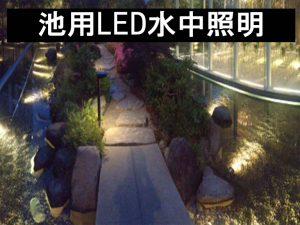 池照明写真