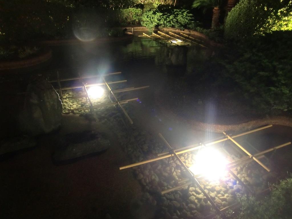 ホテル 庭 LED水中照明