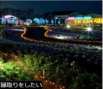 ガーデンライト画像7