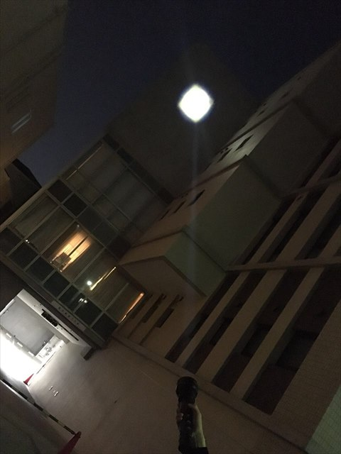 ハンディ投光器実例写真21